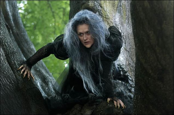 Picture of Meryl Streep in Into the Woods