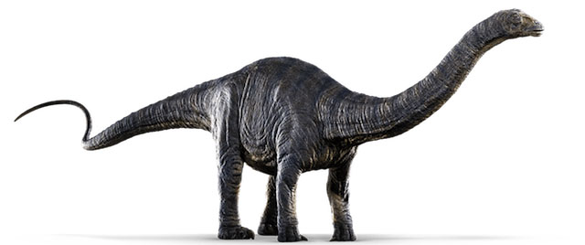 The Apatosaurus is just one of the exciting Jurassic World dinosaurs.