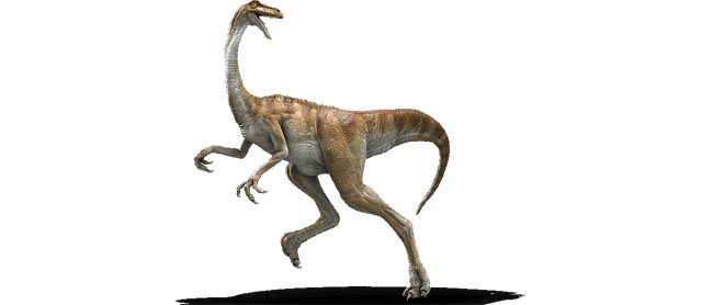 Another of the various Jurassic World dinosaurs is the gallimimus.