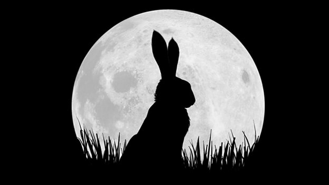 New Animated Watership Down Mini-Series Coming From BBC and Netflix