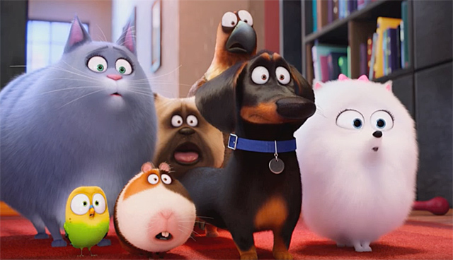The New Secret Life of Pets Trailer is Here!