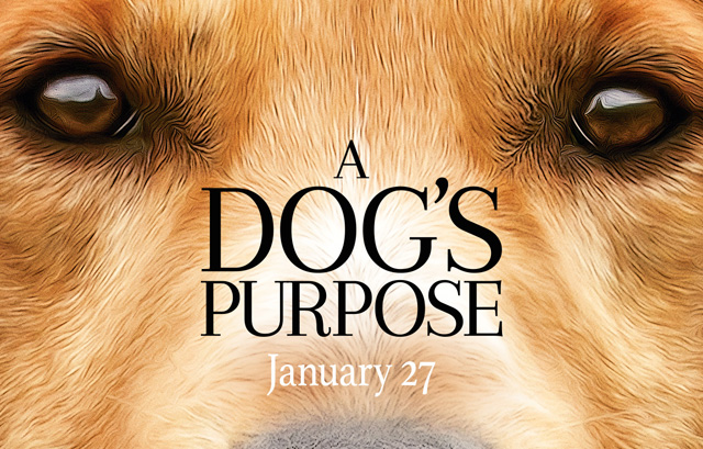 Watch Dennis Quaid In New Trailer For A DOG'S objective