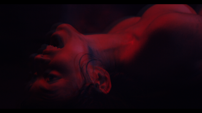 We Are The Flesh Hits Theaters Next Week