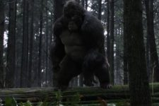 Grodd and Solovar Arrive in New Attack on Gorilla City Photos