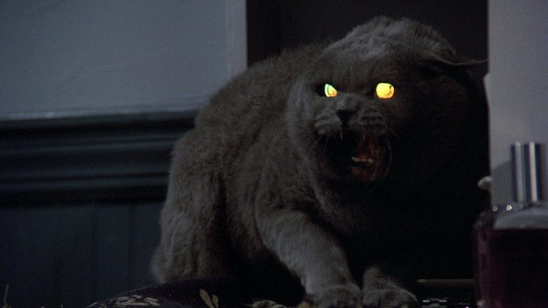 Paramount Pictures sets 2019 release dates for Pet Sematary and Instant Family