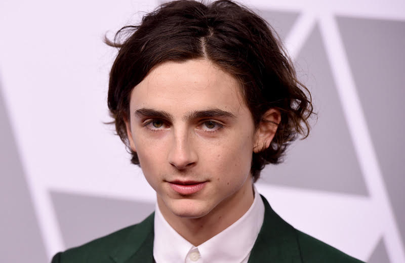 Lady Bird's Timothee Chalamet to Play Young Henry V in The King