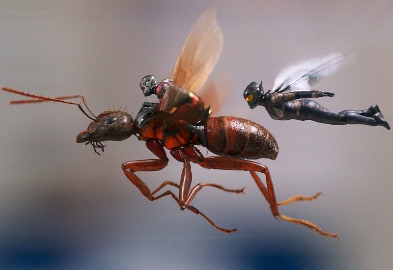 The New Ant-Man and The Wasp Trailer Buzzes Onto the Web!