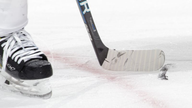 FX Developing Hockey Drama Series Trashers Based on True Story