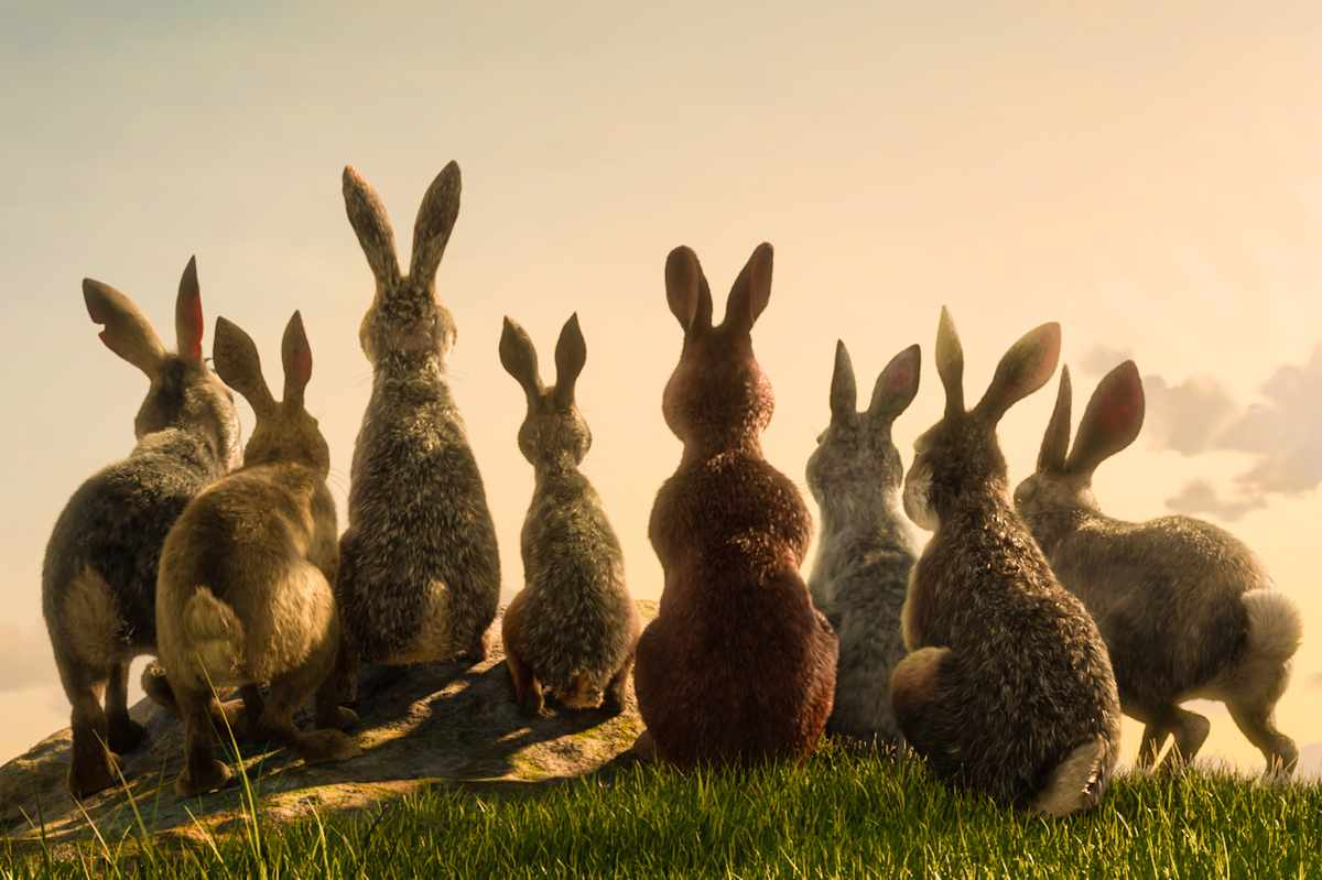 BBC/Netflix adaptation of Watership Down