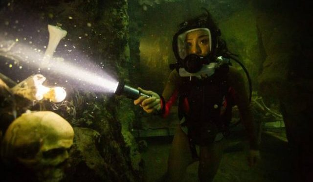 You'll Wish You Were In A Cage in New 47 Meters Down: Uncaged Trailer