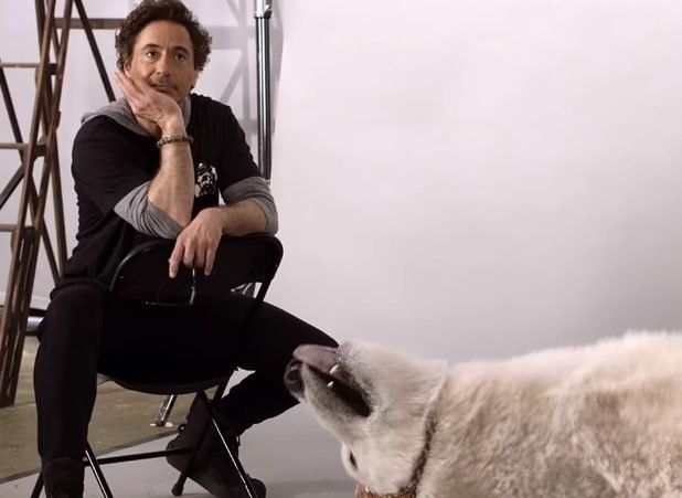 New Dolittle Teaser: Robert Downey Jr. Oversees Animal Auditions