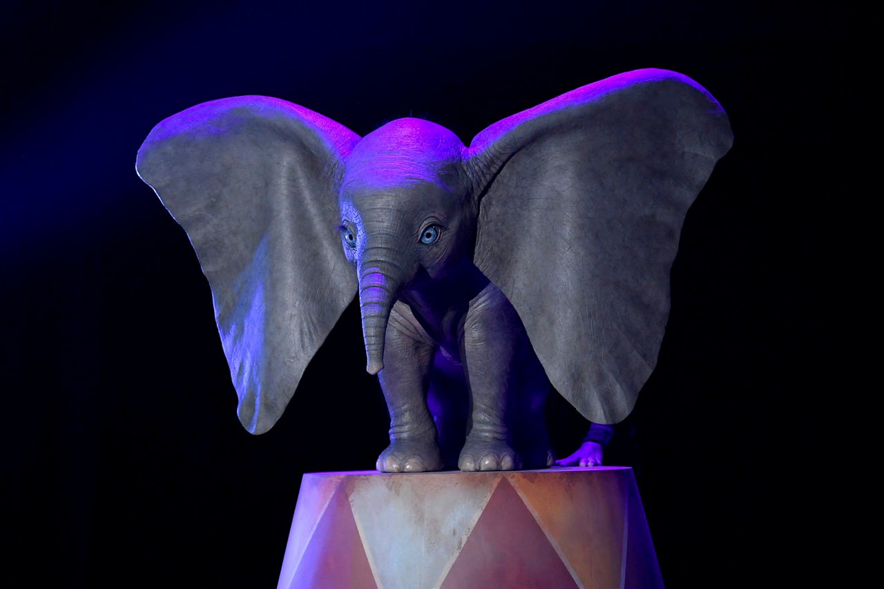 Dumbo at D23 Expo 2017