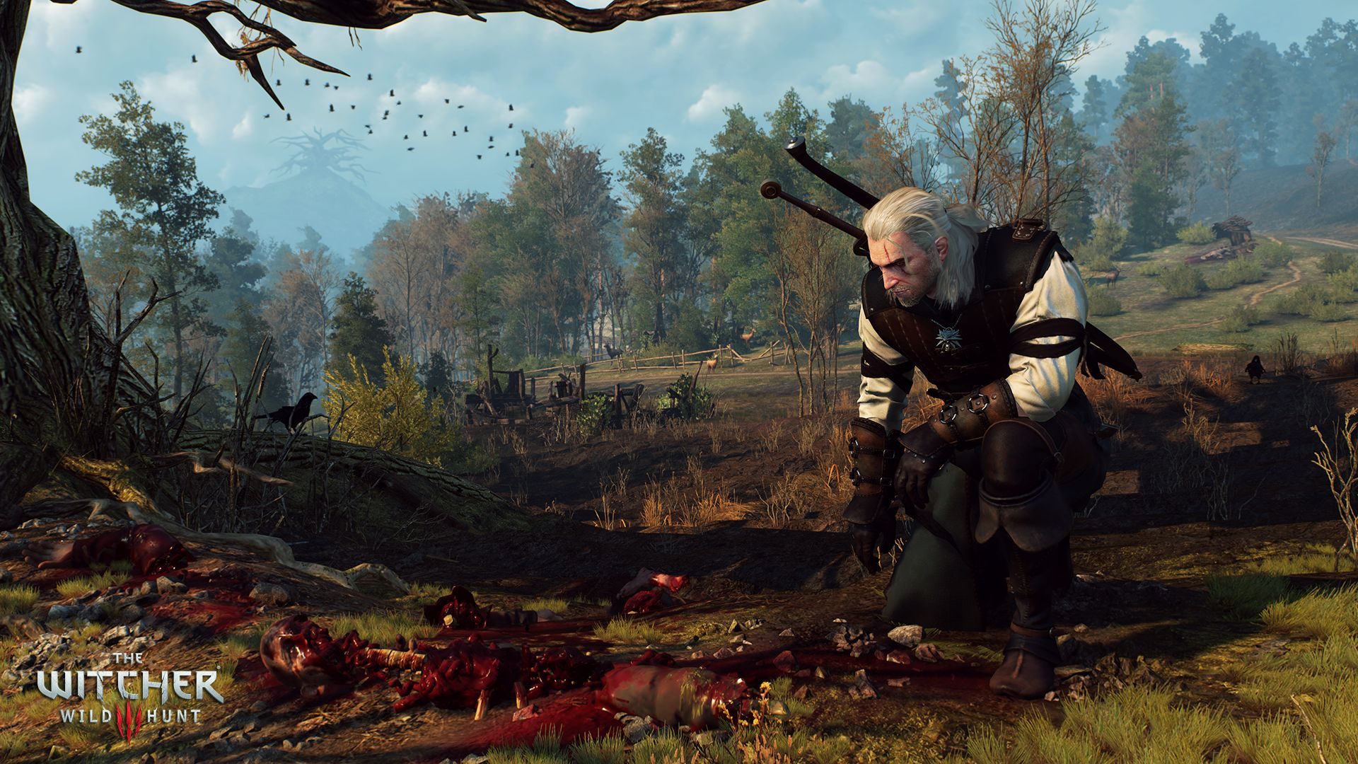witcher3images01